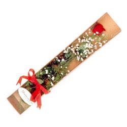 Artvin çiçek , çiçekçi , çiçekçilik  Kutuda tek 1 adet kirmizi gül çiçegi