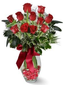 9 adet gül  Artvin internetten çiçek satışı  kirmizi gül