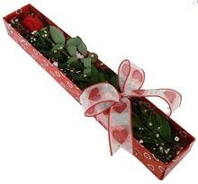 Tek kirmizi gül kutu içerisinde  Artvin güvenli kaliteli hızlı çiçek