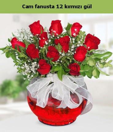 Cam içerisinde 12 adet kırmızı gül  Artvin internetten çiçek satışı