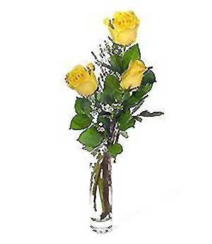 Artvin internetten çiçek siparişi  3 adet kalite cam yada mika vazo gül