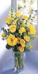 Artvin online çiçek gönderme sipariş  sari güller ve gerbera cam yada mika vazo