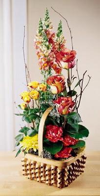 Artvin çiçek , çiçekçi , çiçekçilik  aslan agzi gül ve patlardan tanzim