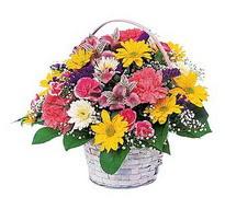 Artvin çiçek , çiçekçi , çiçekçilik  mevsim çiçekleri sepeti özel