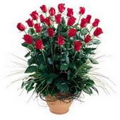 Artvin uluslararası çiçek gönderme  10 adet kirmizi gül cam yada mika vazo