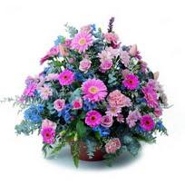 Artvin çiçek servisi , çiçekçi adresleri  mevsim çiçekleri sepeti çiçek yolla için önerilir