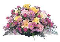 Artvin çiçek gönderme sitemiz güvenlidir  karisik sepet tanzimi bahar