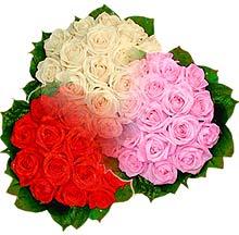 3 renkte gül seven sever   Artvin çiçek , çiçekçi , çiçekçilik