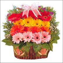 ahsap sepette gerberalar   Artvin çiçekçi mağazası
