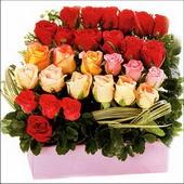 15 adet renkli gül ve cam   Artvin çiçekçi mağazası