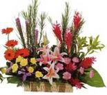çok özel aranjman tanzimi   Artvin çiçek gönderme sitemiz güvenlidir