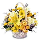 sadece sari çiçek sepeti   Artvin çiçek gönderme sitemiz güvenlidir