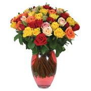 51 adet gül ve kaliteli vazo   Artvin çiçek gönderme sitemiz güvenlidir