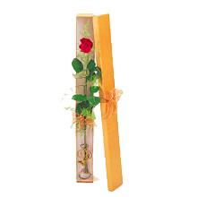 ince  kutuda  1  gül   Artvin çiçek yolla