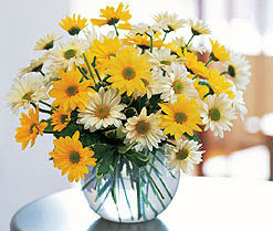 Artvin internetten çiçek satışı  cam vazo içerisinde 3 adet krizantem demeti