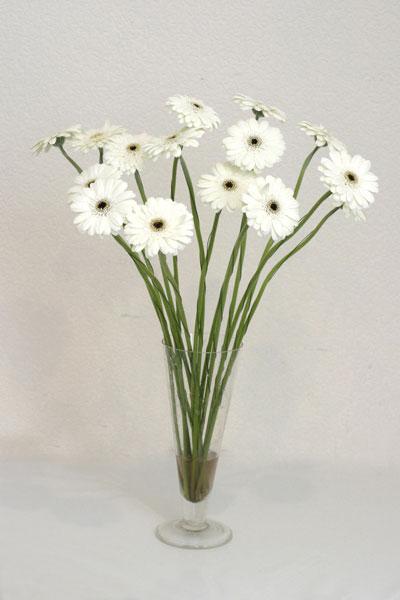 Artvin çiçek mağazası , çiçekçi adresleri  cam vazo içerisinde 17 adet sade gerbera