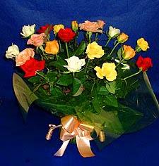 Artvin hediye çiçek yolla  13 adet karisik renkli güller