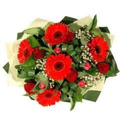 Artvin ucuz çiçek gönder   5 adet kirmizi gül 5 adet gerbera demeti