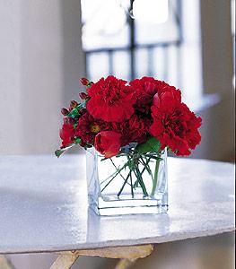 Artvin ucuz çiçek gönder  kirmizinin sihri cam içinde görsel sade çiçekler