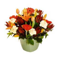 mevsim çiçeklerinden karma aranjman  Artvin çiçek yolla , çiçek gönder , çiçekçi