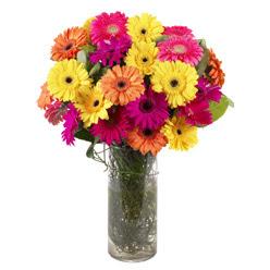 KARISIK GERBERALARDAN CAM VAZO TANZIMI  Artvin güvenli kaliteli hızlı çiçek