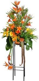 Artvin çiçek siparişi sitesi  perförje tanzimi dügün nikah ve açilislara
