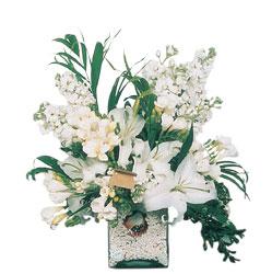 Artvin internetten çiçek siparişi  sadece beyazlardan olusmus mevsim cam yada mika tanzim