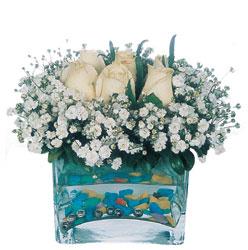 Artvin çiçekçi mağazası  mika yada cam içerisinde 7 adet beyaz gül