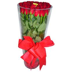 Artvin çiçek online çiçek siparişi  12 adet kirmizi gül cam yada mika vazo tanzim
