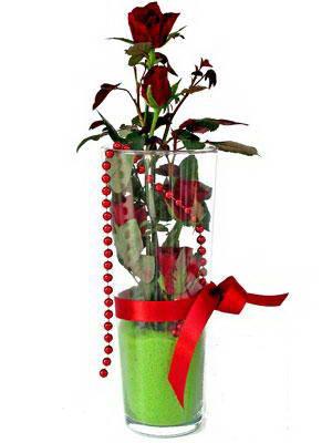 Artvin online çiçek gönderme sipariş  Cam yada mika içerisinde 9 adet kirmizi gül - sevdiklerinize özel