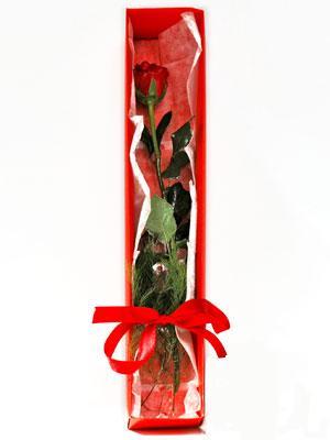 Artvin yurtiçi ve yurtdışı çiçek siparişi  1 adet kutuda gül