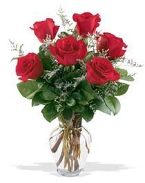Artvin çiçek gönderme sitemiz güvenlidir  7 adet kirmizi gül cam yada mika vazoda sevenlere