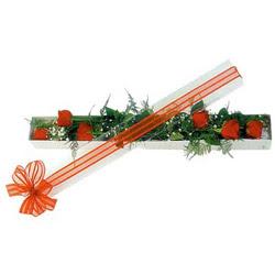 Artvin çiçek siparişi sitesi  6 adet kirmizi gül kutu içerisinde