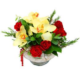 Artvin çiçek gönderme  1 adet orkide 5 adet gül cam yada mikada