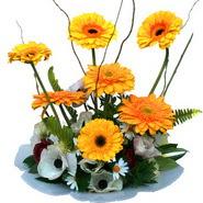 camda gerbera ve mis kokulu kir çiçekleri  Artvin çiçekçi telefonları