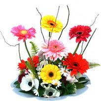Artvin hediye çiçek yolla  camda gerbera ve mis kokulu kir çiçekleri