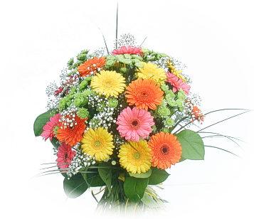 13 adet gerbera çiçegi buketi  Artvin online çiçek gönderme sipariş