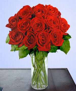 Anneme 12 adet cam içerisinde kirmizi gül  Artvin çiçek siparişi sitesi