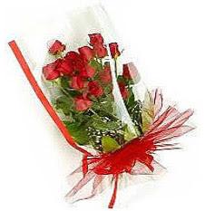 13 adet kirmizi gül buketi sevilenlere  Artvin çiçek siparişi vermek