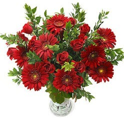 5 adet kirmizi gül 5 adet gerbera aranjmani  Artvin hediye çiçek yolla