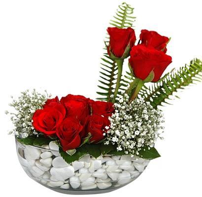 cam içerisinde 9 adet kirmizi gül  Artvin çiçek siparişi vermek