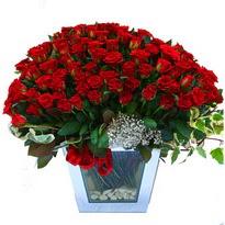 Artvin çiçekçiler   101 adet kirmizi gül aranjmani