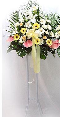 Artvin online çiçek gönderme sipariş   perförje çiçegi dügün çiçekleri