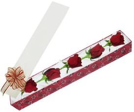 Artvin internetten çiçek satışı  kutu içerisinde 5 adet kirmizi gül