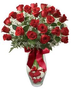 17 adet essiz kalitede kirmizi gül  Artvin çiçek mağazası , çiçekçi adresleri
