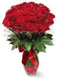 19 adet essiz kalitede kirmizi gül  Artvin 14 şubat sevgililer günü çiçek
