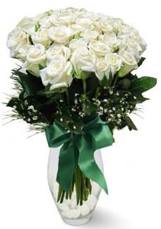 19 adet essiz kalitede beyaz gül  Artvin çiçekçiler