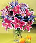 Artvin çiçek mağazası , çiçekçi adresleri  Sevgi bahçesi Özel  bir tercih