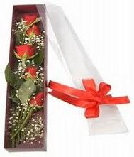 kutu içinde 5 adet kirmizi gül  Artvin internetten çiçek siparişi