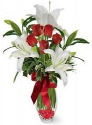 Artvin çiçek siparişi vermek  5 adet kirmizi gül ve 3 kandil kazablanka